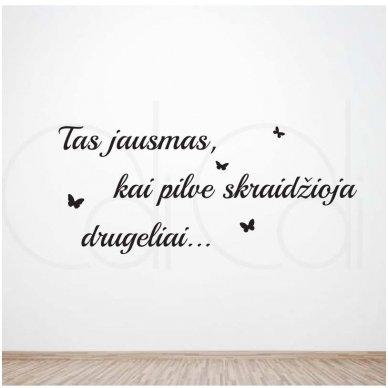 """Lipdukas ant sienos """"Pilve drugeliai"""""""